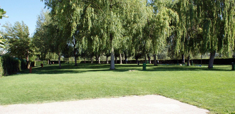 Las piscinas municipales de verano en san fernando abren desde el jueves d a 19 - Piscina san fernando de henares ...