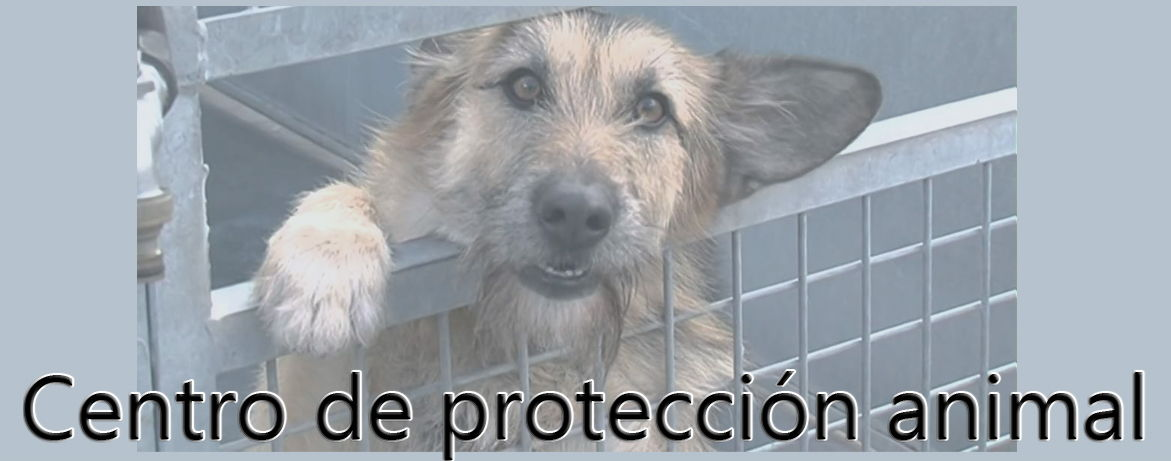 proteccion_animal