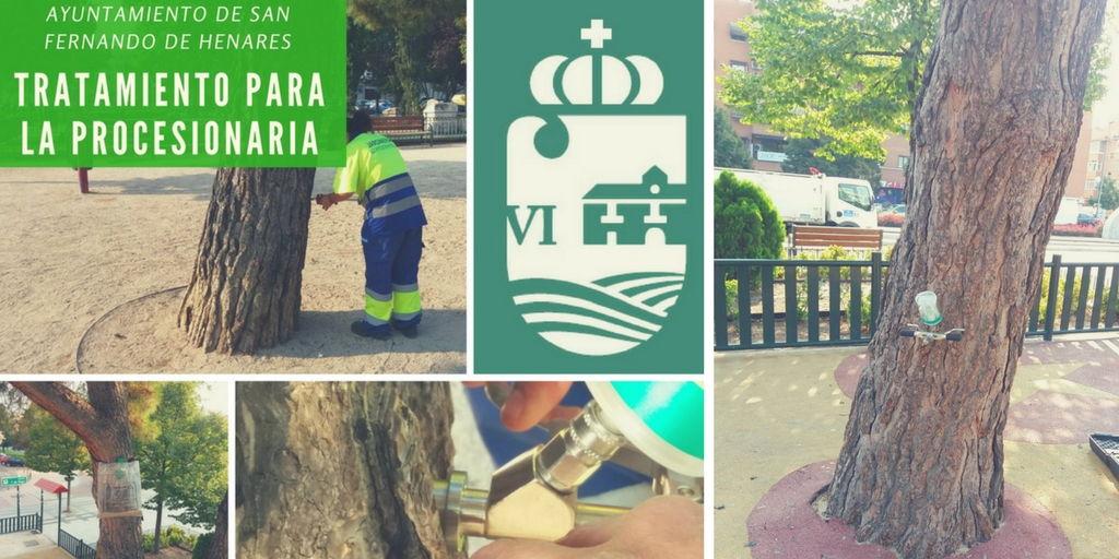 Durante el mes de septiembre se ha procedido al tratamiento de los arboles en San Fernando de Henares contra la procesionaria