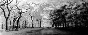 Obra de ate de la exposición: paseo de los Chopos pintado a carboncillo