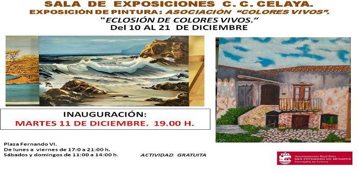 """Exposición de pintura: Asociación """"Colores vivos"""""""