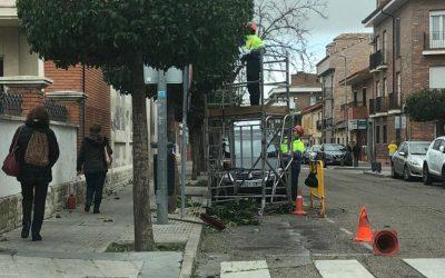 Continúan las labores de poda que han llegado a más de 40 espacios de la ciudad