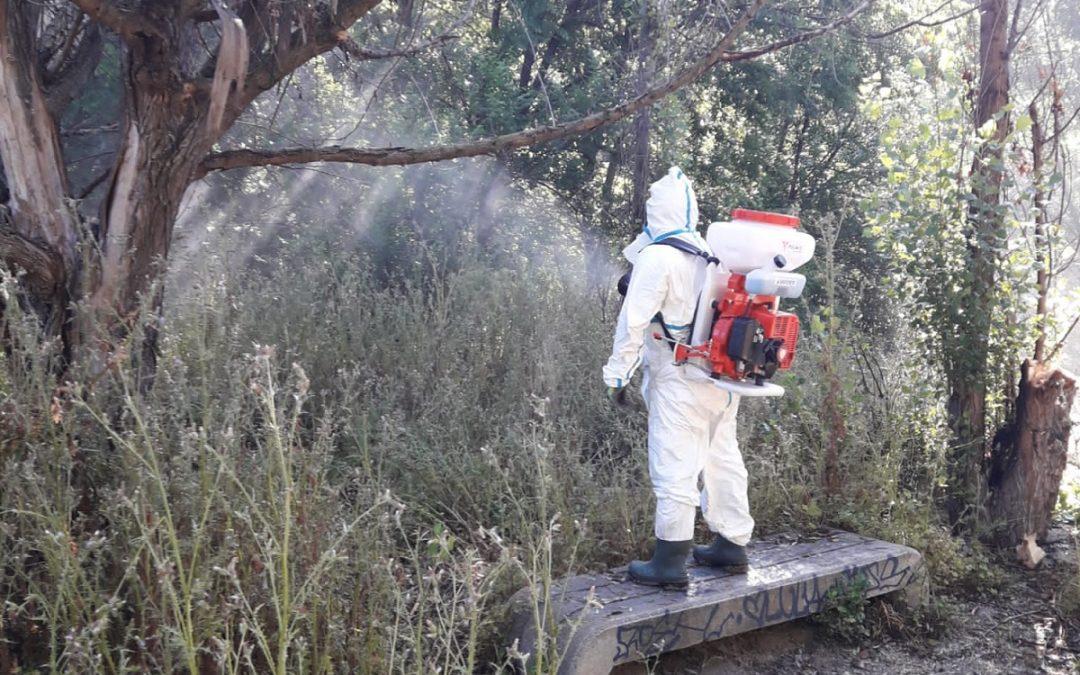 El Ayuntamiento de San Fernando de Henares inicia la campaña para la prevención y control de larvas de mosquitos y mosca negra