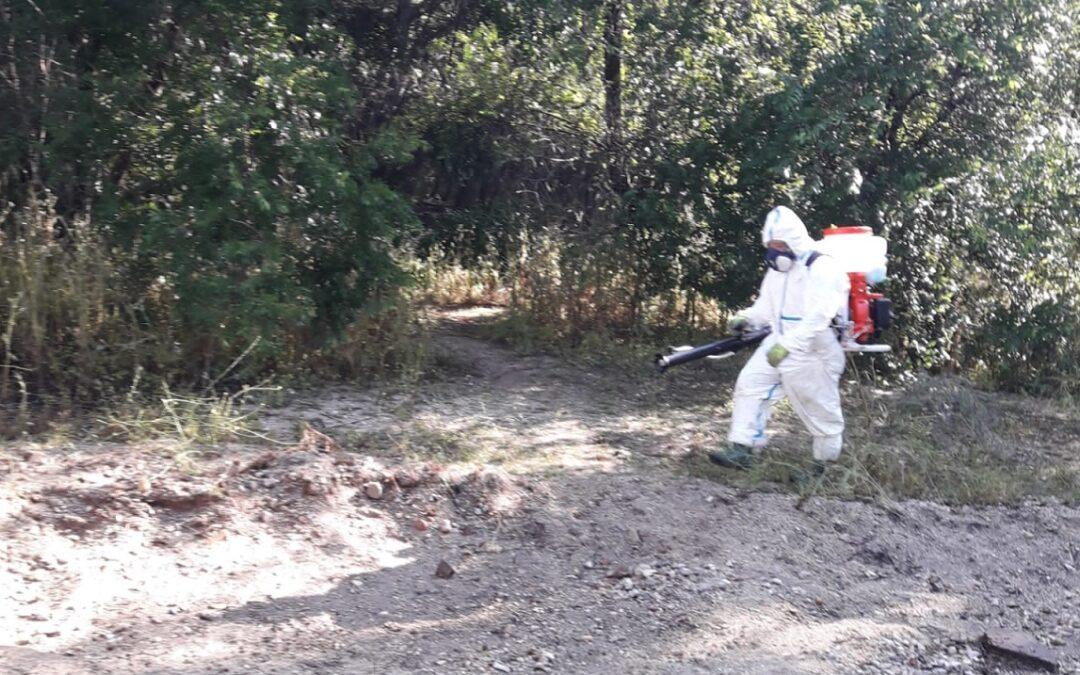 El área de Sanidad redobla esfuerzos ante mosquitos y larvas durante estas jornadas