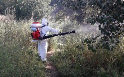 Continúa la campaña de eliminación de larvas y mosquitos con incidencia en inmediaciones del río y en el Polideportivo Municipal