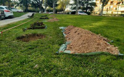 Arranca la segunda fase del 'II Plan Municipal de Arbolado' en la explanada verde de la calle Zumárraga