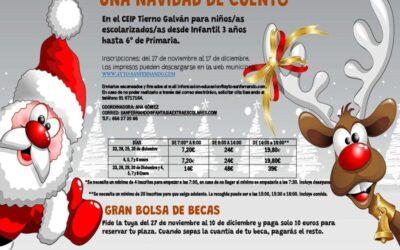 Listado provisional becados/as convocatoria de ayudas a familias de la actividad 'Una Navidad de Cuento'
