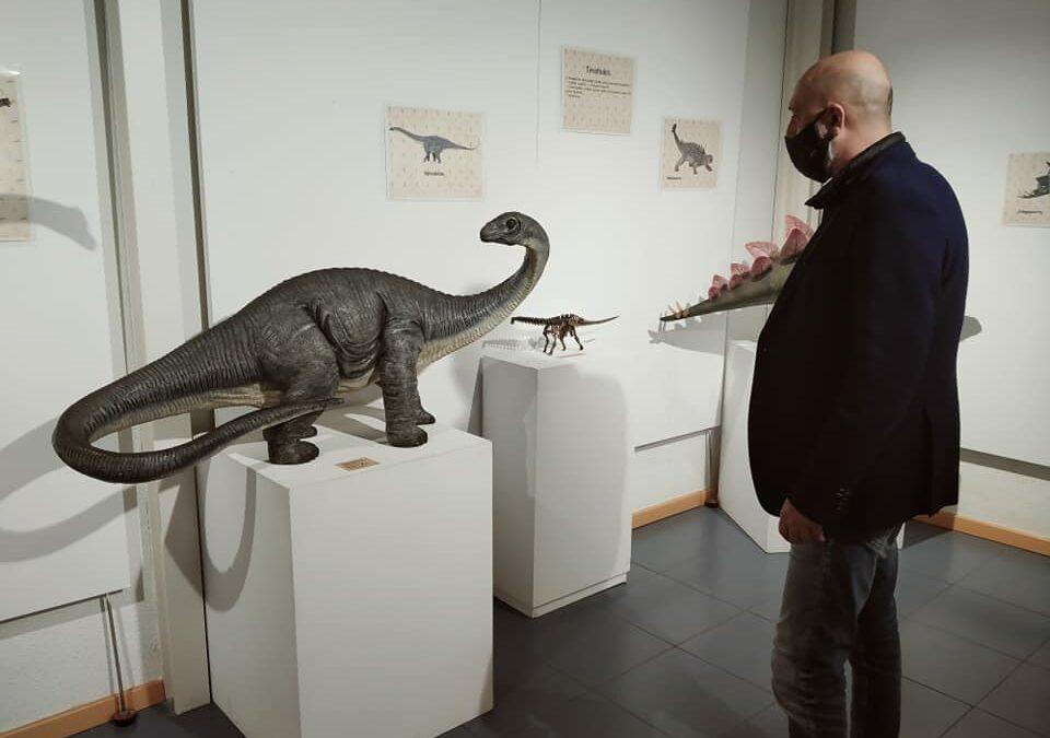 Recorrido 'online' por la muestra 'Los grandes habitantes de la Tierra: los dinosarios'