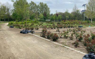 Labores de desbroce en el entorno del Parque Jarama