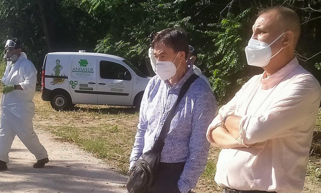La Concejalía de Sanidad emprende una campaña contra la proliferación de mosquitos y larvas que se completará con el buzoneo de un folleto informativo para vecinos/as